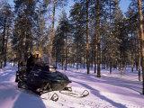 Woman Driving Snowmobile Near Lulea  Lapland  Sweden  Scandinavia