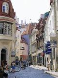 Pikk Street  Old Town  Tallinn  Estonia  Baltic States
