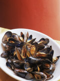 Plate of Mussels  Glasgow  Scotland  United Kingdom
