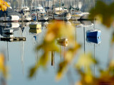 Reflection of Boats in Quartermaster Marina  Vashon Island  Washington State  USA
