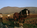 Horse and Plough  County Sligo  Connacht  Eire (Republic of Ireland)