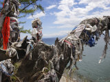 Sacred Shamanic Tree on Lake Baikal  Siberia  Russia