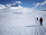 The Track Towards Peer Gynthytta  Below Mount Smiubelgen  Rondane National Park  Norway