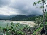 Cape Tribulation  Near Where Captain Cook Ran Aground on Reef  Queensland  Australia