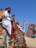 Camel Adorned with Colourful Tassel and Bridles  with Camelier  Bikaner Desert Festival  India