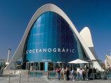 Oceanographic Park  Architect Santiago Calatrava  City of Arts and Sciences  Spain