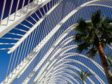 Umbracle  City of Arts and Sciences  Architect Santiago Calatrava  Spain