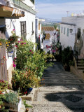 Narrow Street Filled with Flowers and Plants  Salobrena  Andalucia (Andalusia)  Spain