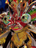 Devil Mask  the Devil Dance (La Diablada)  Carnival  Oruro  Bolivia  South America