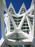 Detail of Principe Felipe Museum of Science  Architecture by Santiago Calatrava  Spain