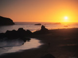 Harris Beach State Park  Brookings  Oregon  USA