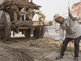 Man in Topi Hat Takes Part in the Annual Construction of a Chariot for a Religious Festival