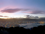 Panoramic View from Mount Victoria at Sunset  of Wellington  North Island  New Zealand
