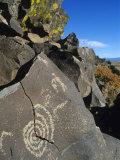 Petroglyphs  Santa Fe County  New Mexico  USA