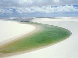 Small Lagoon and Sandy Dunes  Parque Nacional Dos Lencois Maranhenses  Brazil  South America