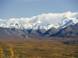 Snowline on Alaska Range  Denali National Park  Alaska  USA