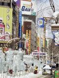 Ice Sculptures in Susukino Street  Yuki Matsuri (Snow Festival)  Sapporo  Hokkaido  Japan