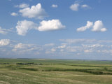 Prairie Farmland  North Dakota  USA