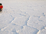 Salt Flats Beside Lac Assal in Rift Valley 152M Below Sea Level  Afar Triangle  Djibouti  Africa