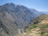 Canyon Below Chivay  Colca Canyon  Peru  South America