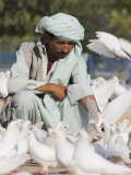 Man Feeding the Famous White Pigeons  Mazar-I-Sharif  Afghanistan