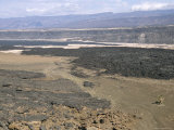 Lavas from Ardoukoba Volcano in Rift Valley 152M Below Sea Level  Afar Triangle  Djibouti  Africa