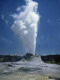 Geyser  Yellowstone National Park  Unesco World Heritage Site  Wyoming  USA