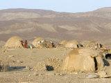 Desert Camp of Afar Nomads  Afar Triangle  Djibouti  Africa