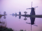 Windmills in Early Morning Mist  Kinderdijk  Unesco World Heritage Site  Holland