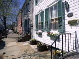 Exterior of Houses on a Typical Street  Annapolis  Maryland  USA