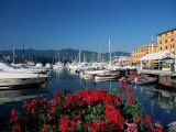 View Across the Harbour  Santa Margherita Ligure  Portofino Peninsula  Liguria  Italy