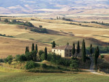 Farmhouse and Cypress Trees in the Early Morning  San Quirico d'Orcia  Tuscany  Italy
