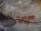 Rock Paintings  Matopo Park  Zimbabwe  Africa