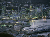 Te Papa Museum Marina and City Lights in the Evening  Wellington  North Island  New Zealand