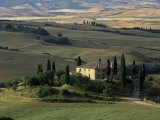 Farmhouse and Cypress Tres in the Earning Morning  San Quirico d'Orcia  Tuscany  Italy