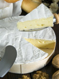 French Brie Cheese  France