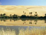 Oum El Ma Lake  Mandara Valley  Southwest Desert  Libya  North Africa  Africa