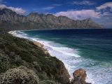 Coastline  Western Cape  South Africa  Africa