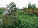 Battle Site  Culloden Moor  Highland Region  Scotland  United Kingdom