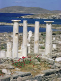 Archaeological Site  Delos  Unesco World Heritage Site  Greece