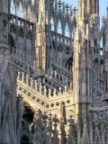 Milan Cathedral  Milan  Lombardy  Italy