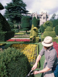 Topiary  Levens Hall  Cumbria  England  United Kingdom