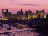 Caernarfon (Caernarvon) Castle  Unesco World Heritage Site  Gwynedd  Wales  United Kingdom