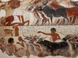 Fragment of a Tomb Painting Dating from Around 1400 BC from Thebes  Egypt  North Africa  Africa