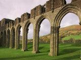 Ruins of Llanthony Priory  Vale of Ewyas  Black Mountains  Gwent  Wales  United Kingdom
