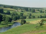 River Wharfe  Barden Bridge Near Bolton  Yorkshire  England  United Kingdom