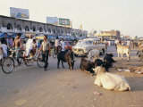 Marketplace  Puri  Orissa State  India