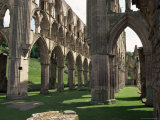 Rievaulx Abbey  Yorkshire  England  United Kingdom