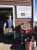 Dale Marchland Selling Malpeque Oysters  Malpeque  Prince Edward Island  Canada