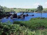 Walanapanapa Black Sand Beach  Hana Coast  Maui  Hawaii  Hawaiian Islands  USA